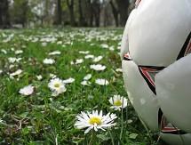 Fotboll2